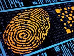 La sfida del cyber risk e il ruolo della cyber insurance