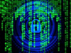 Web Application: come far fronte alle crescenti minacce?